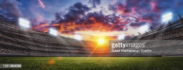 soccer stadium, green grass and night sky. 3d renering - stadium stock pictures, royalty-free photos & images