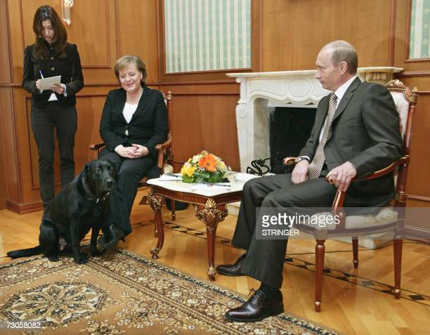 Russian President Vladimir Putin and Germanys Federal Chancellor Angela Merkel are watched by Putin's dog Kuni as they address journalists after...