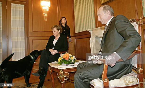 Russian President Vladimir Putin looks on as his dog Kuni approaches Germanys Federal Chancellor Angela Merkel they address journalists after their...