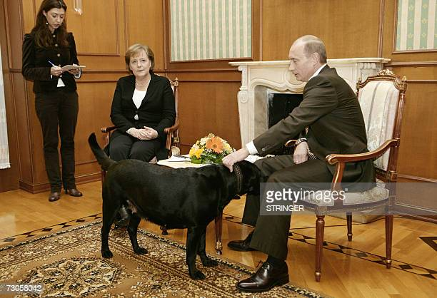 Russian President Vladimir Putin pets his dog Kuni as Germanys Federal Chancellor Angela Merkel looks on as they address journalists after their...