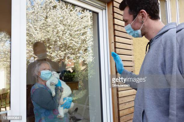 social disancing in times of covid-19: senior woman with cat and mature man looking at each other through the window - cat face mask stock pictures, royalty-free photos & images
