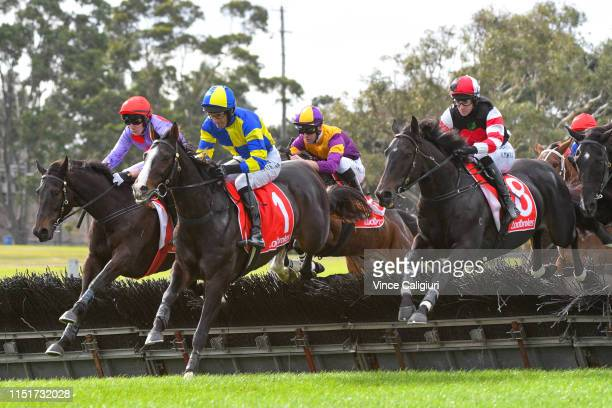Social Element Euroman and Jamieson clear the jump with the eventual winner Clayton Douglas riding Double Bluff in Race 2 Ladbrokes Odds Boost Hurdle...