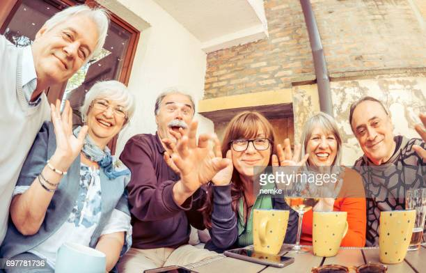 Social Seniors having an outdoors party, taking selfie