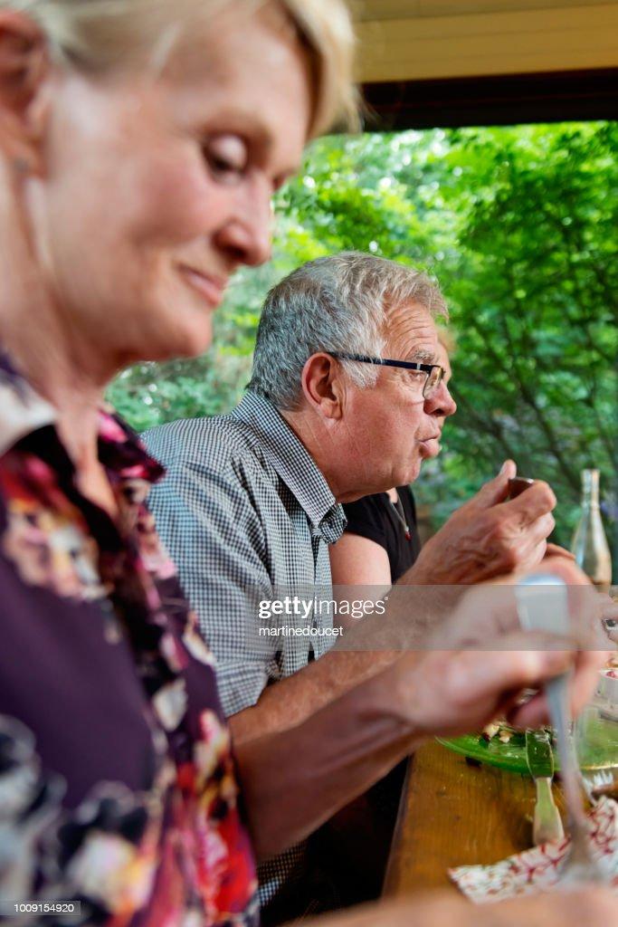 Social seniors having dinner in summer house. : Stock Photo