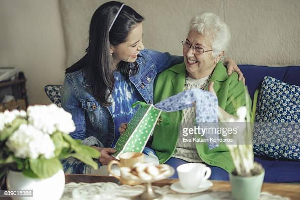 訪問は、ソーシャルワーカーの老人女性