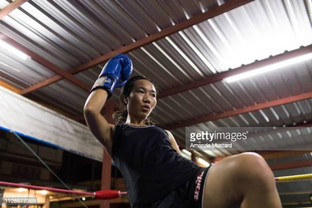 athletic akha/thai woman kicking in boxing ring - muay thai imagens e fotografias de stock