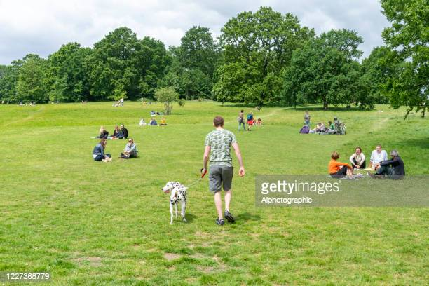 socially distanced groups on parliament hill - hampstead heath stock pictures, royalty-free photos & images