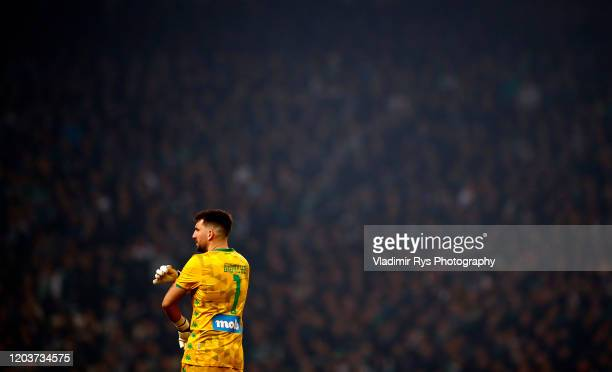 Socratis Dioudis of Panathinaikos is seen during the Greece SuperLeague match between Panathinaikos FC and P.A.O.K. At OAKA Stadium on February 02,...