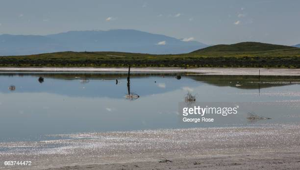 Soda Lake, a 3,000-acre undisturbed alkali lake, is home to thousands of migratory birds and is the largest such wetlands in the state as viewed on...
