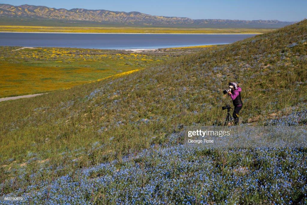 Exploring Carrizo Plain National Monument : News Photo