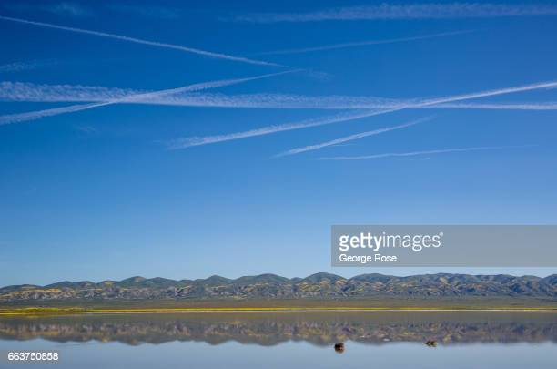 Soda Lake a 3000acre undisturbed alkali lake is home to thousands of migratory birds and is the largest such wetlands in the state as viewed on March...