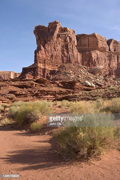 soda springs canyon landscape with white rim caprock formation. - canyonlands national park stock pictures, royalty-free photos & images