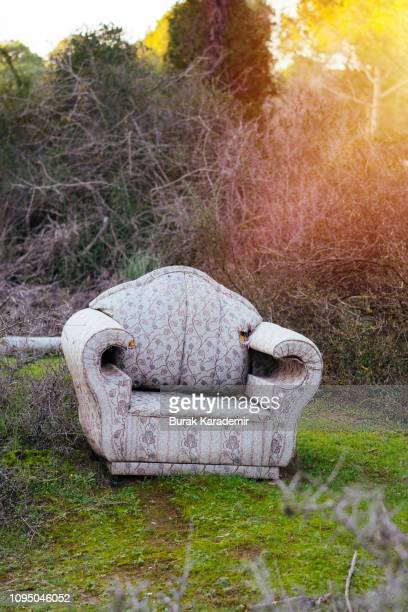 sofa in forest - ugly turkey stock photos and pictures
