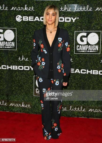Sofia Boutella attends the 2017 GO Campaign Gala on November 18 2017 in Los Angeles California