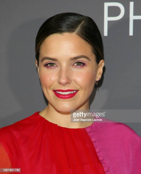 Sofia Bush attends the Annenberg Space for Photography's National Geographic Photo Ark exhibit on October 11 2018 in Century City California