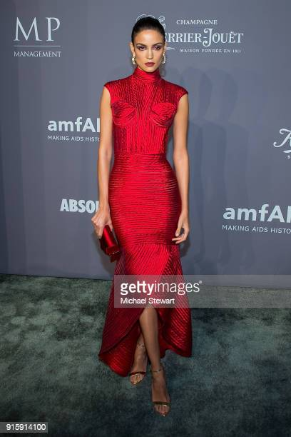 Sofia Resing attends the 2018 amfAR Gala New York at Cipriani Wall Street on February 7 2018 in New York City