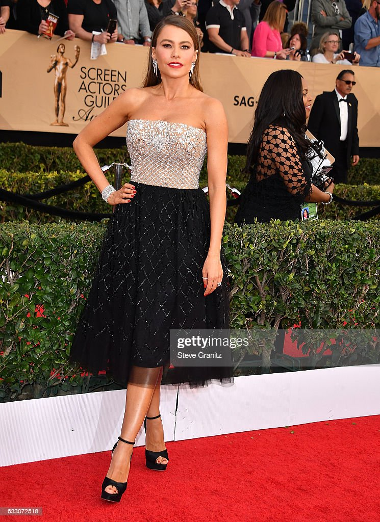 23rd Annual Screen Actors Guild Awards - Arrivals : Nachrichtenfoto