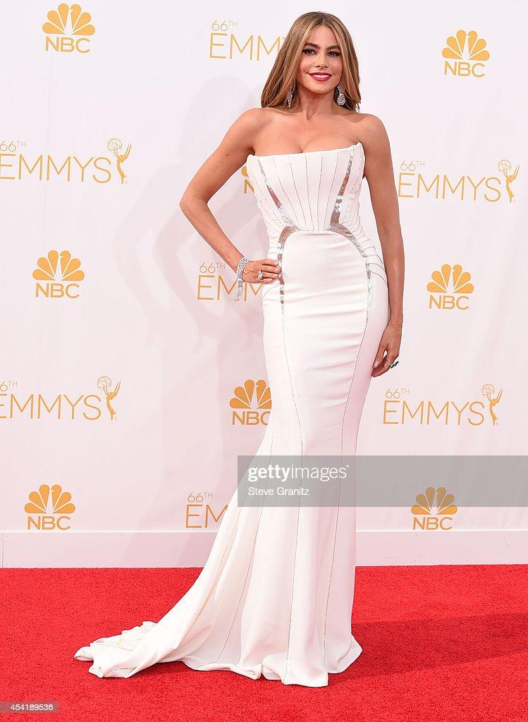 66th Annual Primetime Emmy Awards - Arrivals : News Photo
