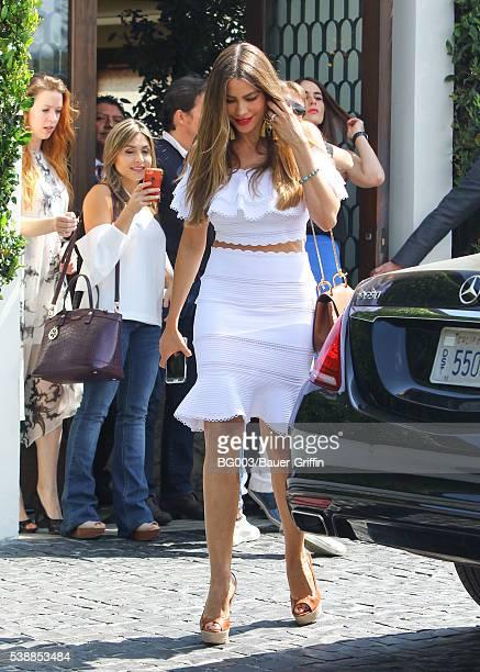 Sofia Vergara is seen on June 08 2016 in Los Angeles California