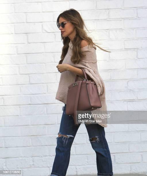 Sofia Vergara is seen on November 13 2018 in Los Angeles CA