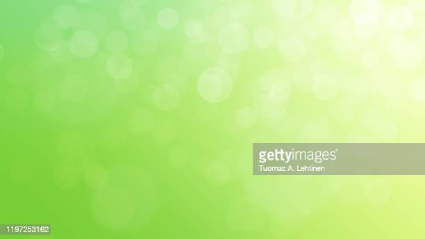 soft and blurred sweet green abstract natural summer or springtime background, with bokeh and copy space. 4k resolution. - grüner hintergrund stock-fotos und bilder