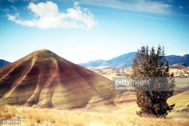 soft focus dreamlike nature scene, painted hill - painted hills stock pictures, royalty-free photos & images