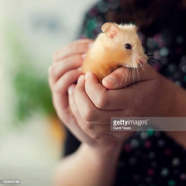 soft friend