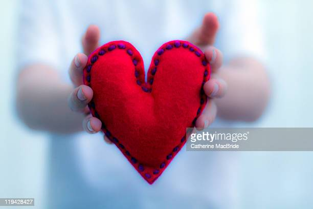 soft hearted - catherine macbride stock pictures, royalty-free photos & images