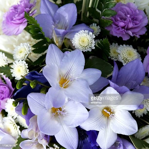 ソフトライラックの色の花
