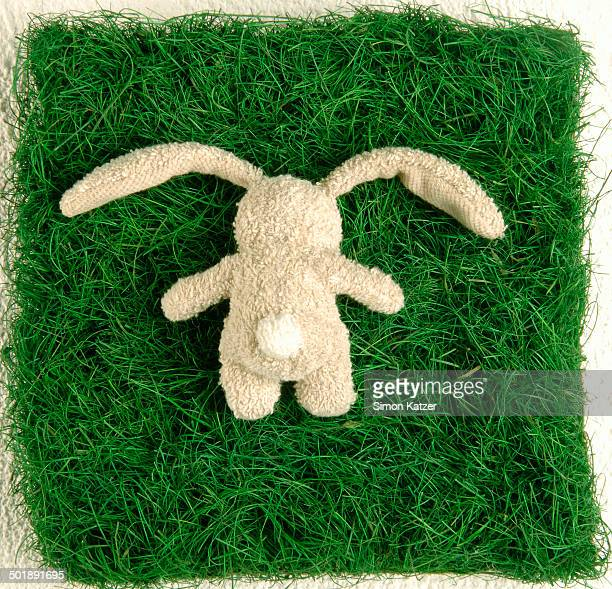 Soft toy, bunny, lying face down on a piece of grass