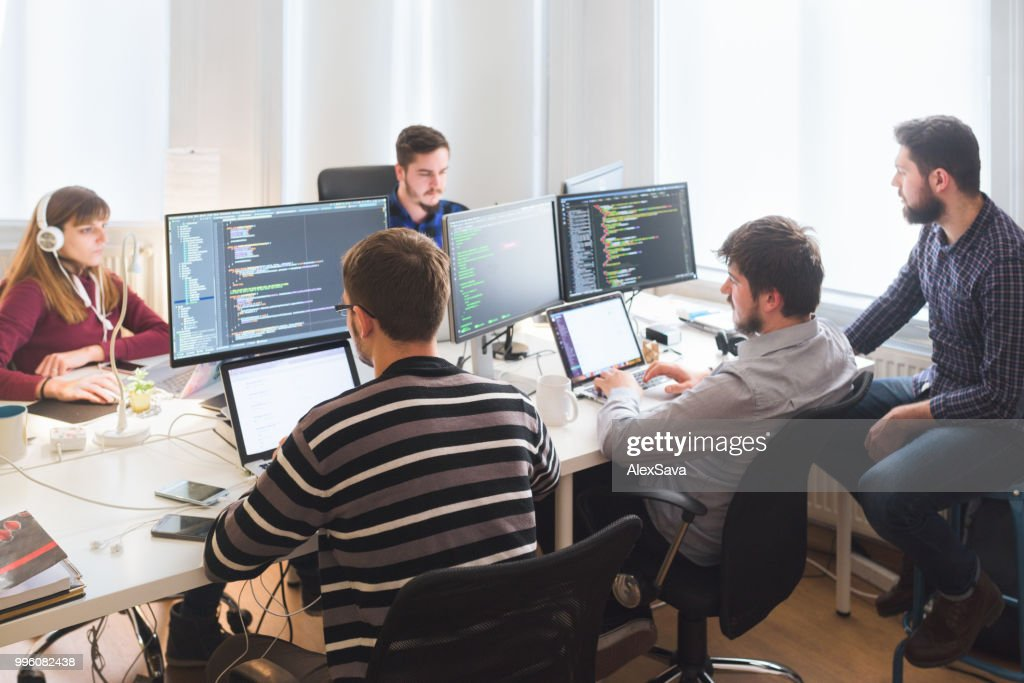 Software developing team working in the office : Stock Photo