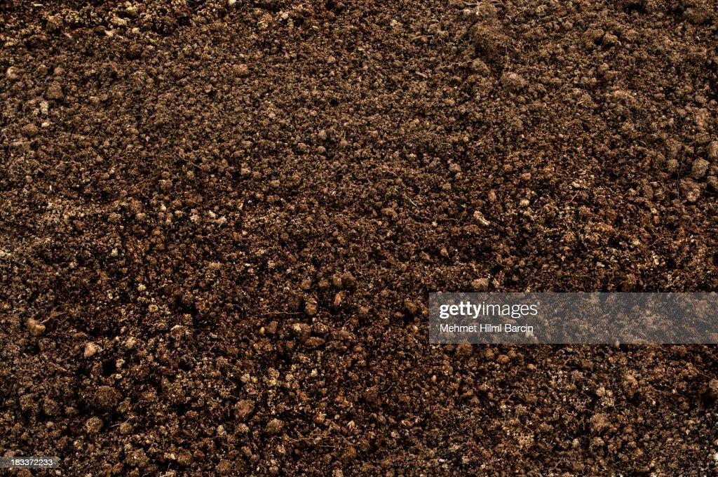 Fond du sol : Photo