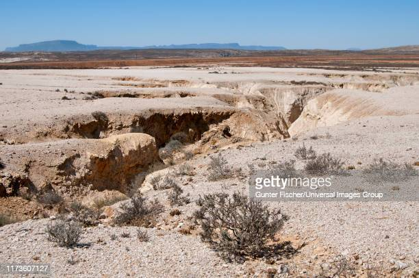 soil erosion in the knersvlakte region, being part of the succulent karoo, western cape, namaqualand, south africa - ナマクワランド ストックフォトと画像