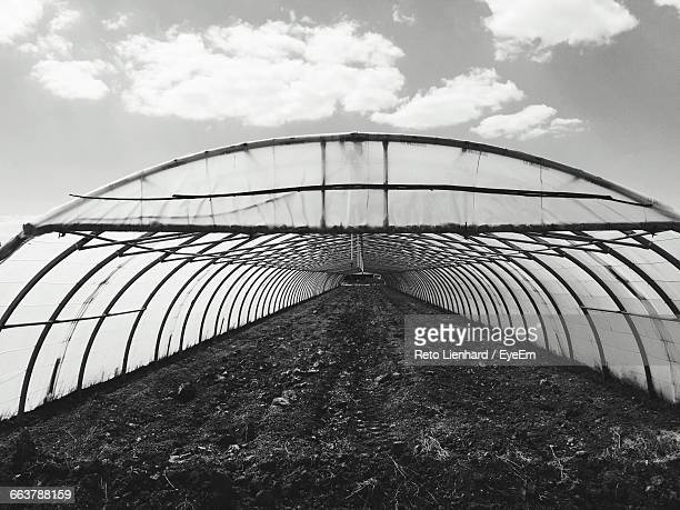 soil in greenhouse against sky - lienhard stock pictures, royalty-free photos & images