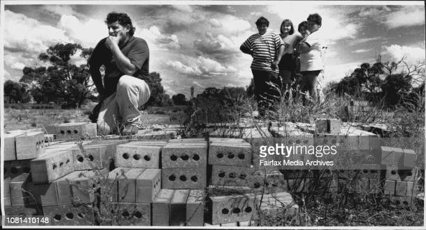 Soil Salinity In The Deniliquin AreaFarmer Ampe Oggian sits on a load of brick with his Children Dino Venezia 13 Jenny 21 and Adrian 12The bricks are...