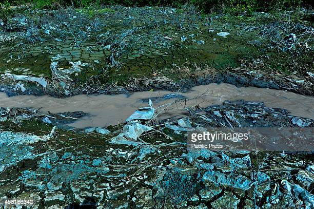 Soil water and the environment become polluted by industrial wastes In Bangladesh climate change is a serious problem where it tops among the 32...