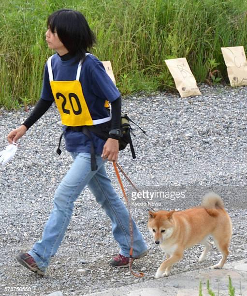 Soja Japan File photo shows Futaba a 5yearold female Japanese Shiba Inu dog being escorted by her trainer Kuniko Kudose in Soja Okayama Prefecture in...