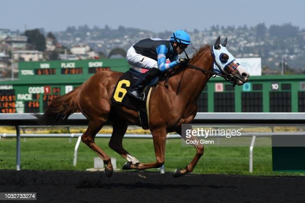 Sojourn with Irving Orozco up on their way to winning the 3rd Race during Summer Races at Golden Gate Fields on Sunday September 2 2018 in Berkeley...