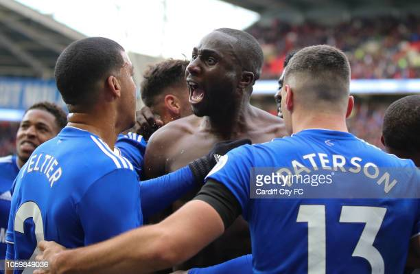 Sol Bamba celebrates scoring the second goal for Cardiff City during the Premier League match between Cardiff City and Brighton Hove Albion at...