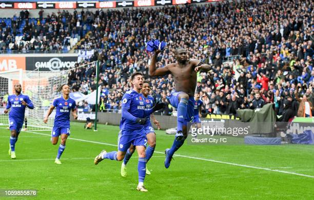 Sol Bamba of Cardiff City celebrates the winning goal during the Premier League match between Cardiff City and Brighton Hove Albion at Cardiff City...