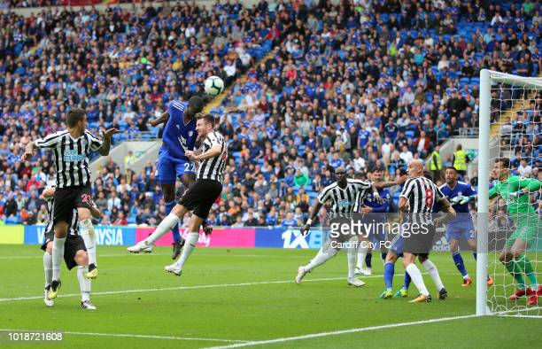 Sol Bamba of Cardiff City during the Premier League match between Cardiff City and Newcastle United at Cardiff City Stadium on August 18 2018 in...