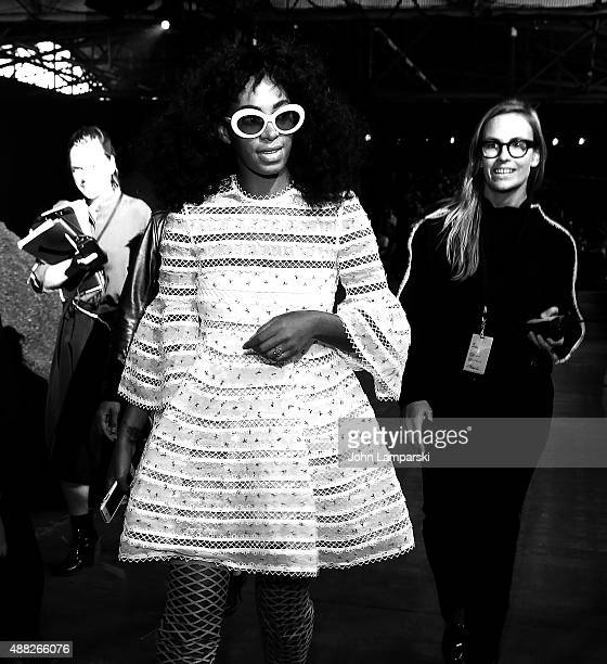 Solange Knowles attends the Phillip Lim collection during Spring 2016 New York Fashion Week at Pier 94 on September 14, 2015 in New York City.
