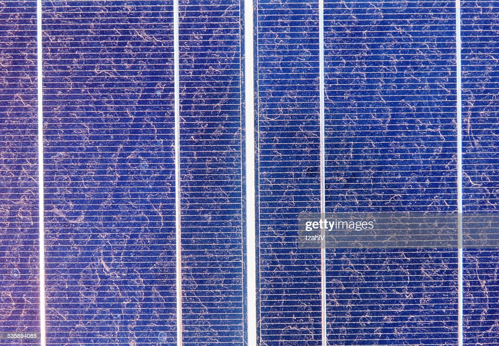 Solar Cell : Stock Photo