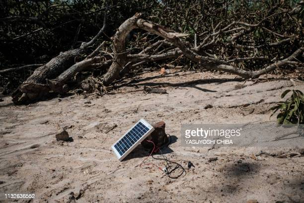 A solar charger is seen beside trees destroyed by the cyclone Idai in Tica Mozambique on March 24 2019 Cyclone Idai smashed into Mozambique's coast...