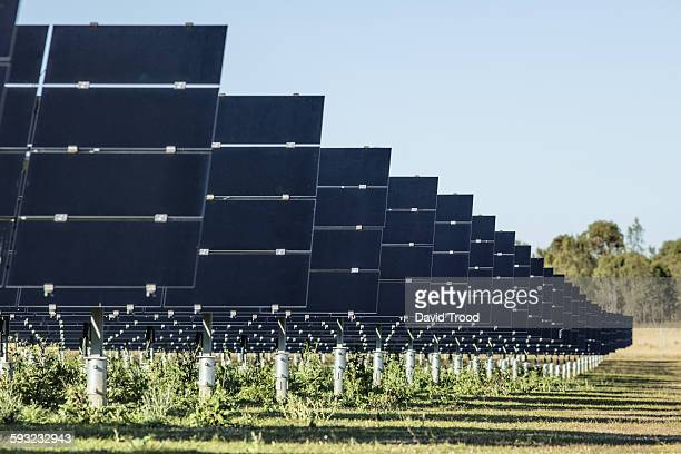 Solar panels at a solar farm in Australia