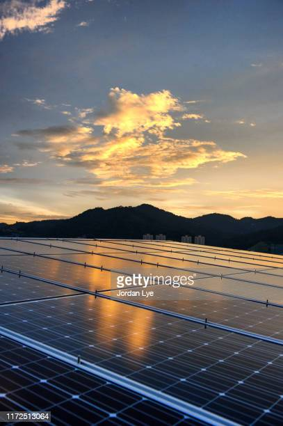 solar panels at evening twilight - solar equipment stock pictures, royalty-free photos & images