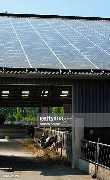 Solar panels on barn roof, Waldfeucht-Bocket, Germany