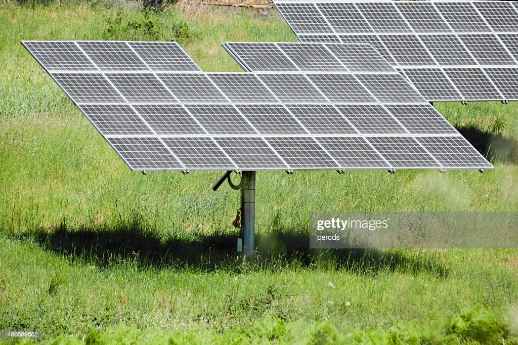 Solar panels on green meadow, environmental conservation. : Stock Photo