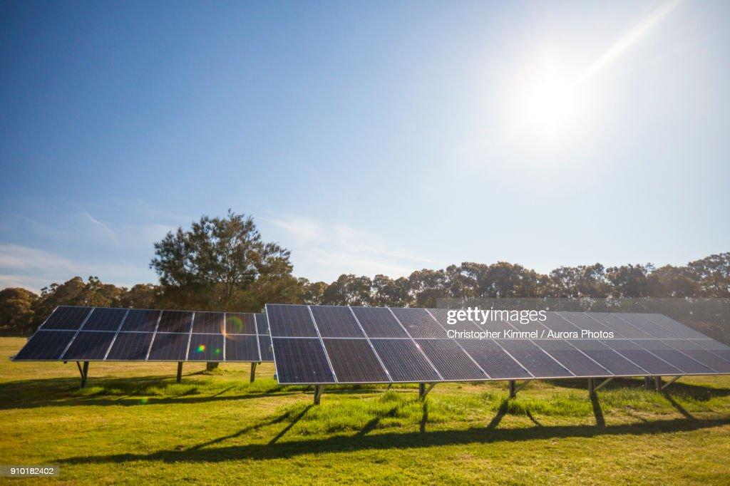 Solar panels on sunny day, Seattle, Washington, USA : Stock Photo