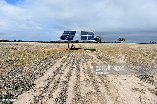 Solar panels used to power a bore water pump to help irrigate the pastures stand at the Lal Lal Estate sheep farm owned by Tianyu Wool Industry Co in...